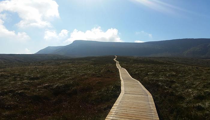 PURGATORIO: WALKING FOR WAITING FOR GODOT