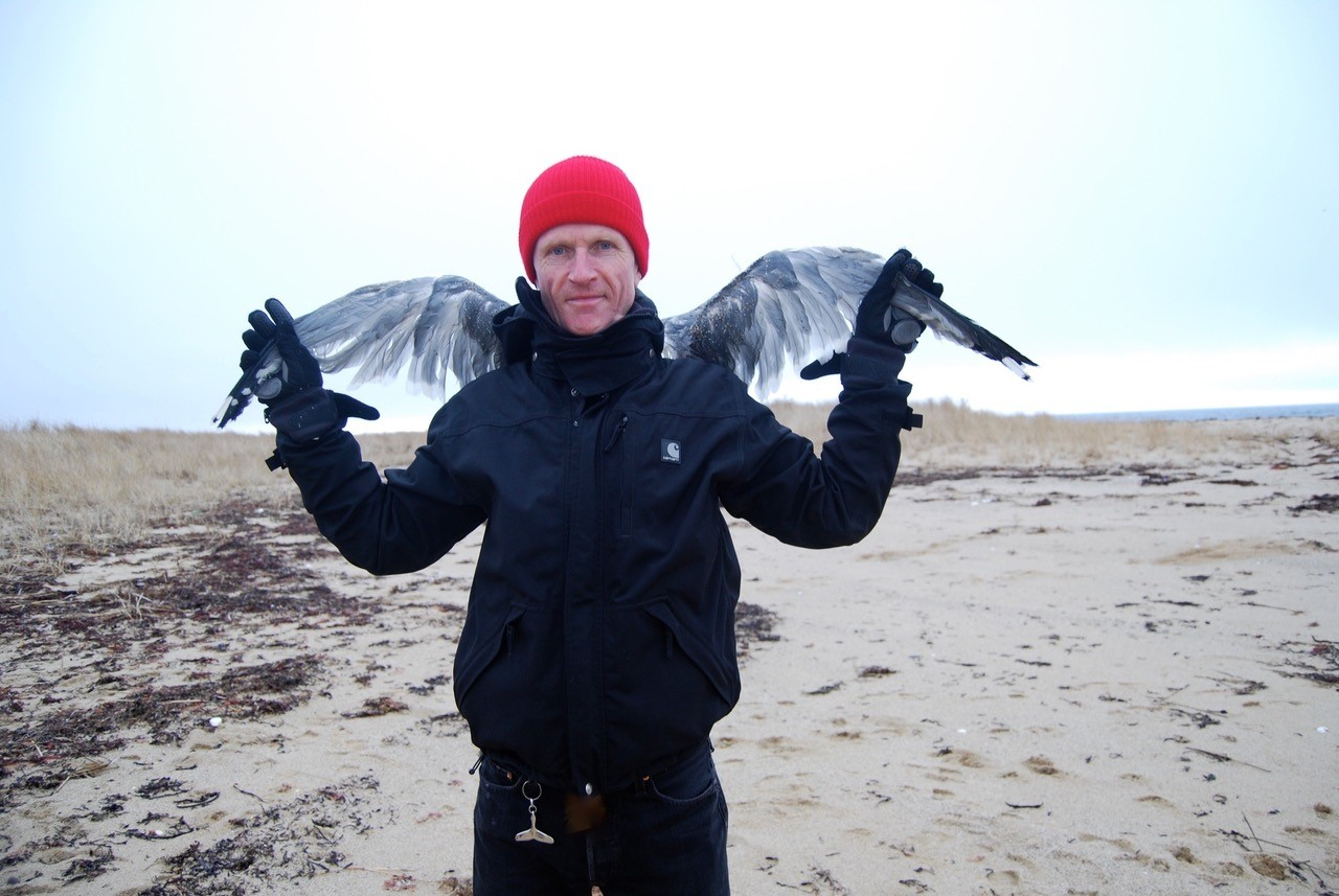WILDETALK: PHILIP HOARE 'WILDE, SWIMMING'